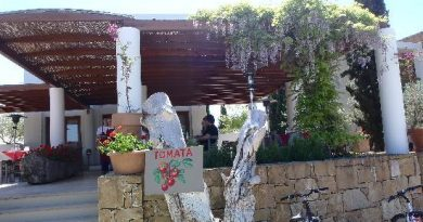 Restaurant 100 Awards Ceremony Τα κορυφαία εστιατόρια της Ελλάδας για το 2019 Ανάμεσά τους και το εστιατόριο Ντομάτα στη Χαλκιδική