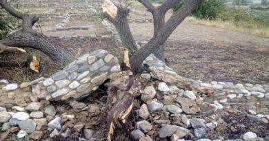 Δρομολογήθηκε η αποκατάσταση των ζημιών στους αρχαιολογικούς χώρους