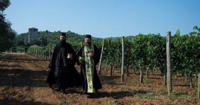 Αγιασμός για τη συγκομιδή των σταφυλιών στη Μονή Χιλιανδαρίου 'Σέρβικο'