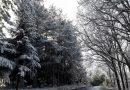 Οι ομορφιές της χειμερινής Χαλκιδικής στην 35η Philoxenia