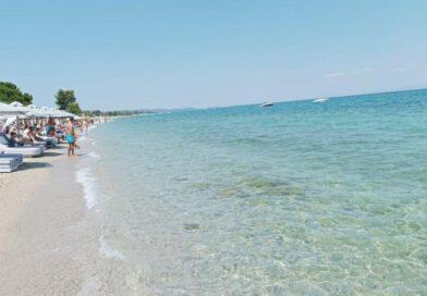 Ερώτηση Γιαννούλη για το φυτοπλαγκτό και τις μέδουσες σε παραλίες της Χαλκιδικής